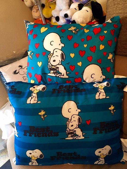 CollectPeanuts.com on Facebook - Cuddle Up! Sally shares these Snoopy and Charlie Brown pillows found at Dollar General.  Join the Snoopy Spotters! Post photos of your finds on the wall.