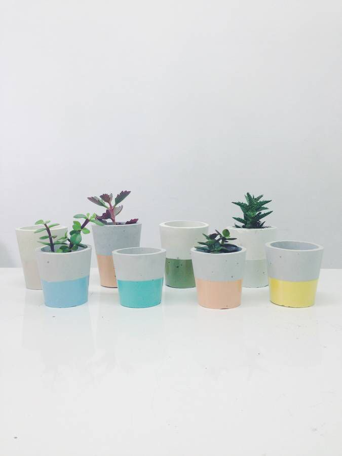 I've just found Pastel Dipped Cement Plant Pot. Handmade and unique pots in porcelain cement dipped in pastel coloured varnish.. £14.00