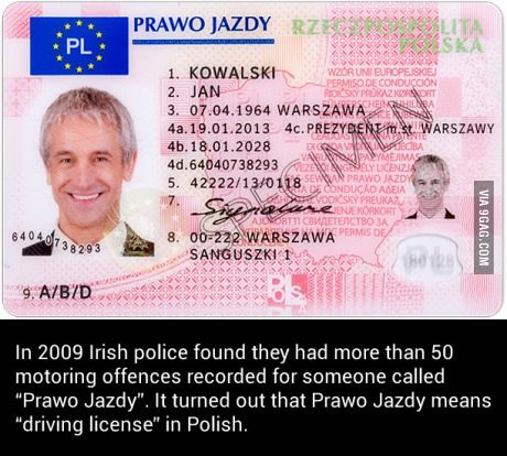 """""""Let me see here. Prawo Jazdy?"""" """"Yes, that's right."""""""