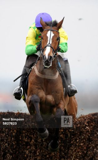 Horse Racing - The 2008 John Smith's Grand National Meeting - Aintree Racecourse -The Totesport Bowl Steeple Chase