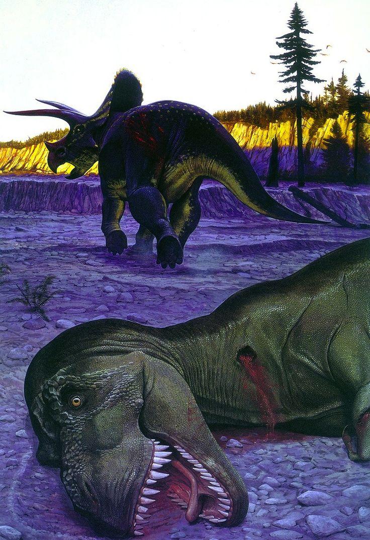 88 best Tyrannosaurus Rex vs. Triceratops images on ...