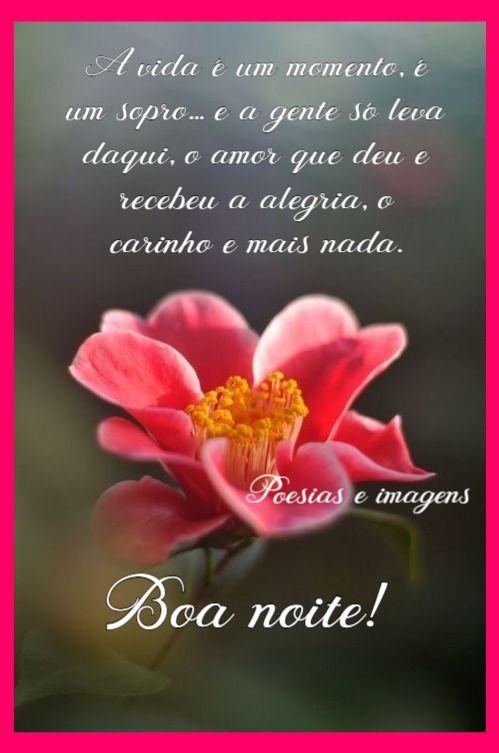 Pin De Andréia Em Lindas Msg Good Morning E Facebook