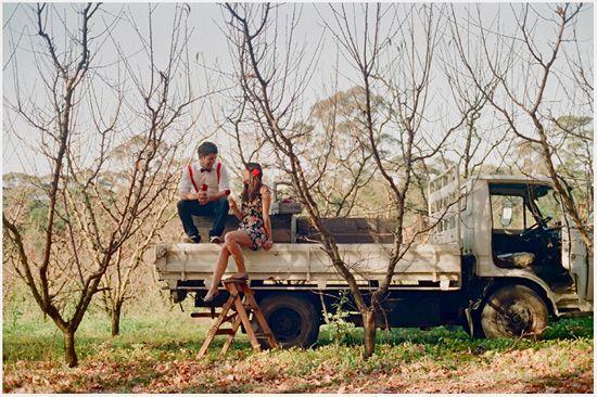 orchard bilpin