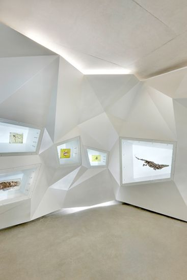 visitor center grube messel by holzer kobler architekturen. GERMANY. nice wall design - would be good for ipads and iphones also