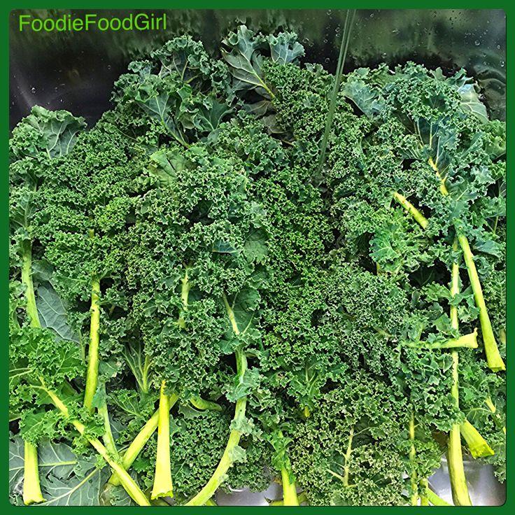 Kale Is 👑 Queen! Kale 🌿🌿🌿is So Hearty It Still Grows In