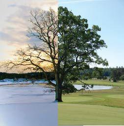 Go4Golf2015 varmistaa, että pysyt kunnossa ja kehityt golfarina myös talven aikana.