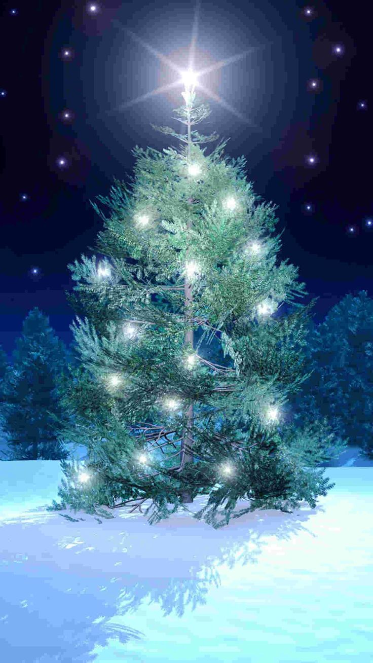 iphone christmas wallpaper 17 best images about 2014 tree iphine 6 plus 11752