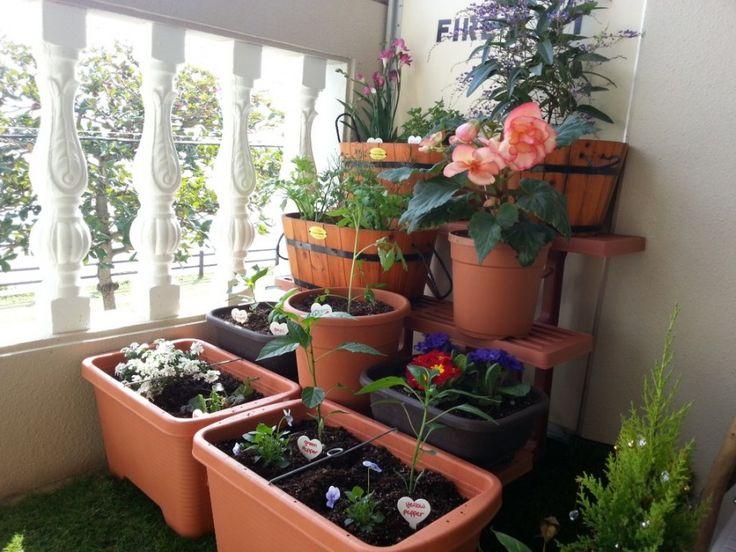 Elegant And Creative Balcony Garden Designs