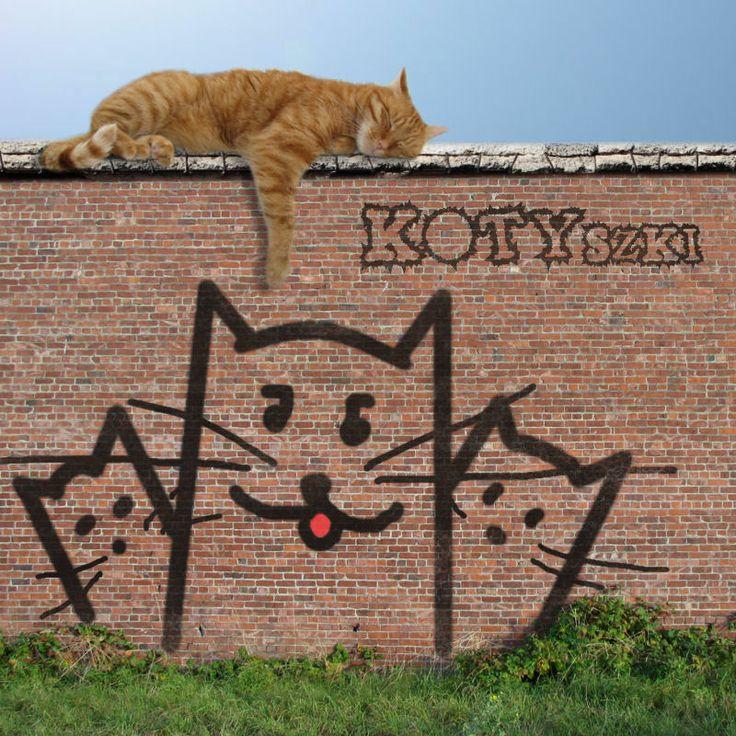 Relax koci :-)