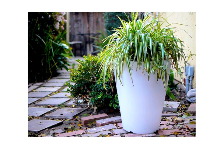 Brighten your outdoor space with an LED Indoor/Outdoor Planter