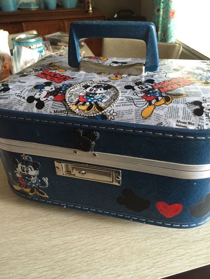 Mickey and Minnie case