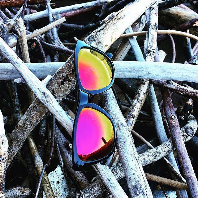 Sonora Sundown looking red hot on top of some drift wood..#sunglasses #sun #tagforlike #instalikes #instacool #loveit #driftwood #shades😎 #shades #summer #sydneysummer #australiansummer #ziggybriggs #theshadylife #followback #beach #style