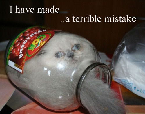 I have made a terrible mistake...