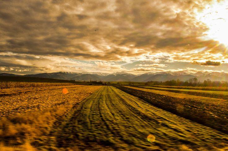 Going to Sibiu by train