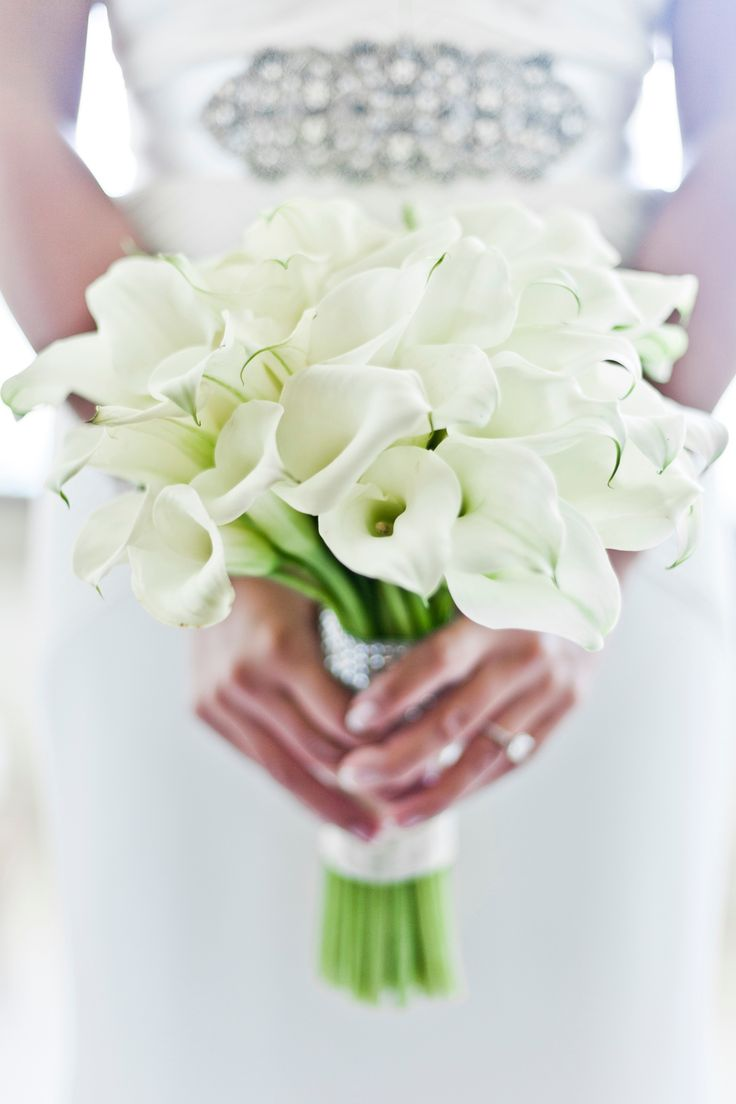29 best images about maui wedding flowers on pinterest purple orchids wedding bridesmaid. Black Bedroom Furniture Sets. Home Design Ideas