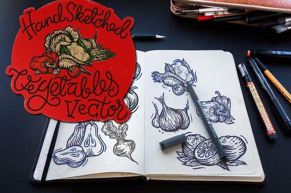 Hand Sketched Vegetables vector - Illustrations - 1