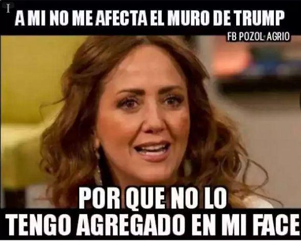 """Fotogalería """"Ante el muro de Trump y la crisis México-EU: memes"""" :: El Informador"""