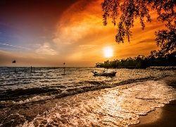 Morze, Wschód słońca, Łódź, Drzewa