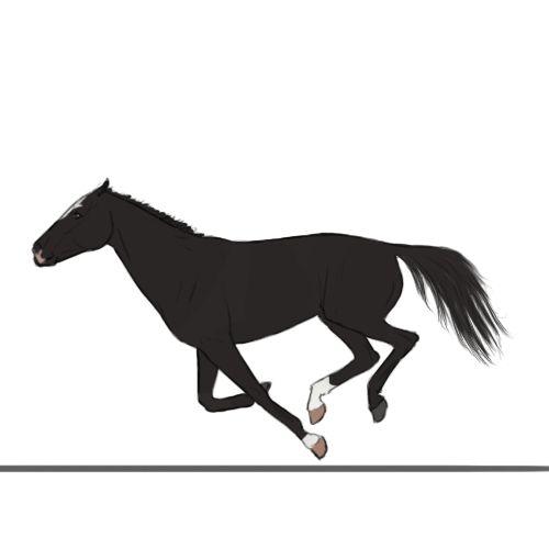 Темная лошадка гифка