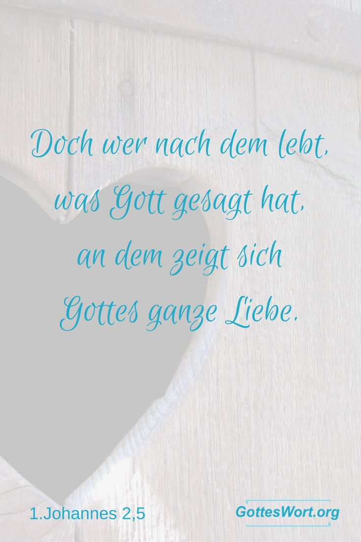 1000+ images about zitate on pinterest | texts, bible quotes and