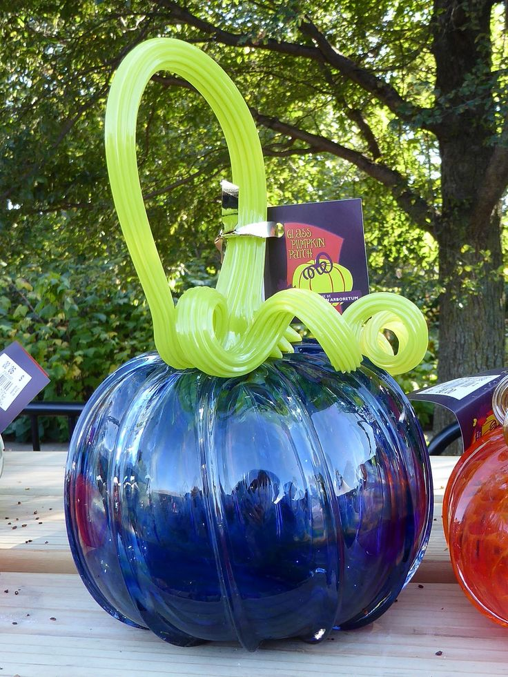 https://flic.kr/p/Qd1uwD | Lisle, IL, Morton Arboretum, Pumpkin Patch Sale, Blown Glass Pumpkin | Almost 6,000 blown glass pumpkins were for sale.
