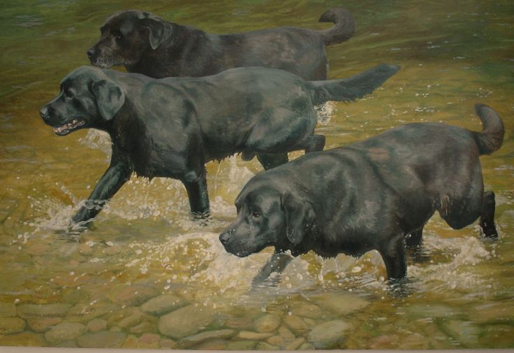 Denise, Sam &. Henry - Oil painting by Tom Wormell