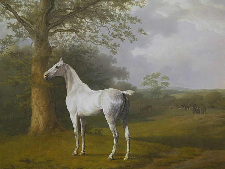 Jacques-Laurent Agasse, White Horse in Pasture, 1806-1807, oil on canvas, Oskar Reinhart Foundation, Winterthur