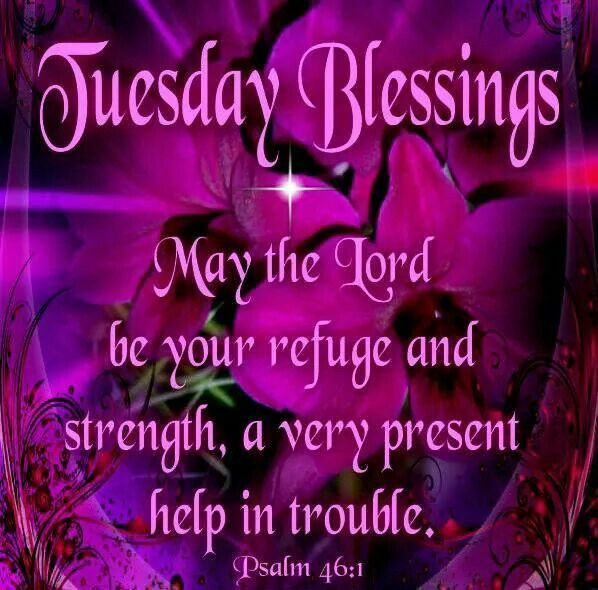 Good Morning Tuesday Messages : Images about good morning blessings on pinterest