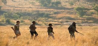 Bush Walks done every day in the wonderfull Pilanesberg National Park where the Big 5 Roam.