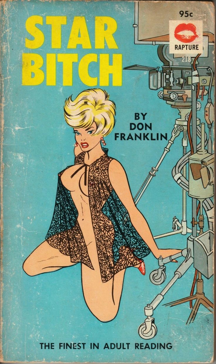 Star Bitch By Don Franklin / Summer Reading