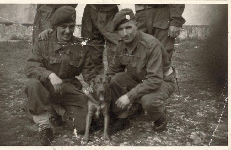65 Sqn Geordie Ratclifffs hand, Chick Johnson, Denis (ossie) Osborne & Malesh the dog Ein Shemer Palestine 1947.jpg (1584×1030)