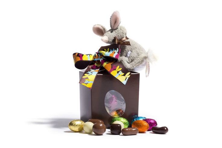The cute clip on bilby with our special Easter mix of chocolates makes the perfect gift this Easter. Purchase instore. www.haighschocolates.com #Easter #Gifts #Chocolate #AustralianMade
