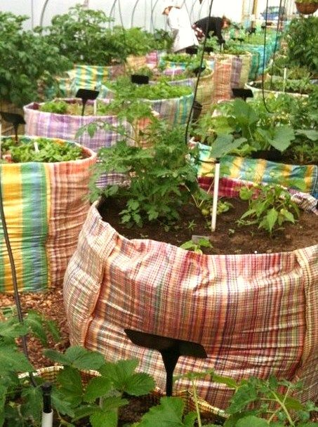 I like these grow bags that could take the place of a hard structure as raised beds.