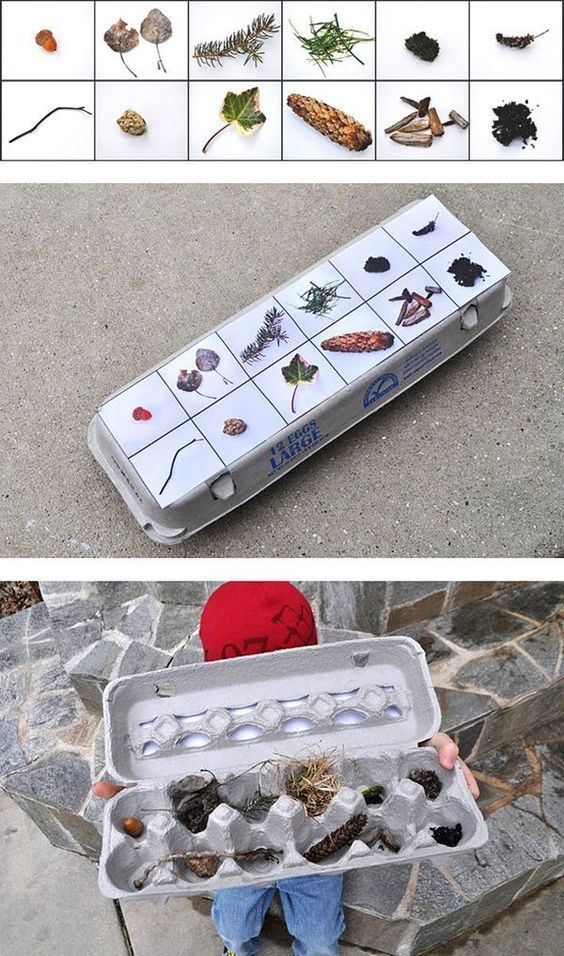 Nature scavenger hunt with egg carton