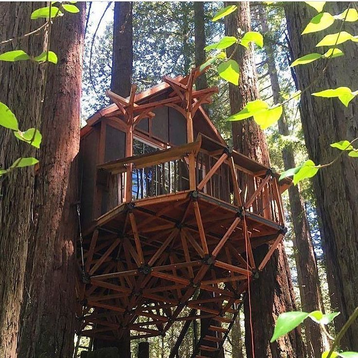 73 best images about tree houses for Treeless treehouse