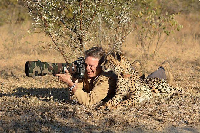 11. Un guépard qui surveille attentivement le cadrage et un elephant qui prend un selfie avec sa trompe !