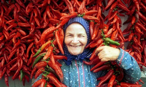 Our national spice - Paprika!