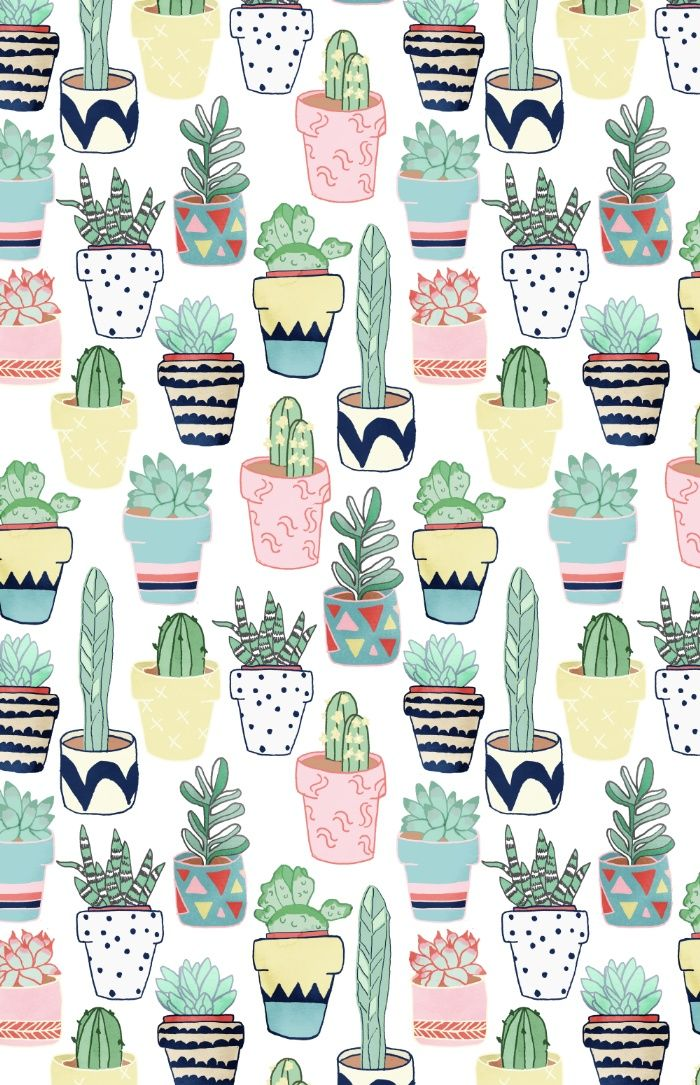 cute cacti in pots pattern design
