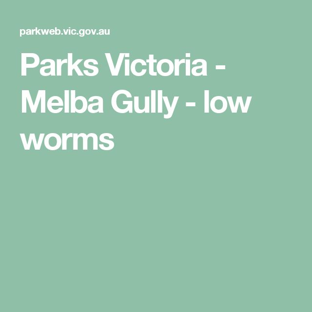 Parks Victoria - Melba Gully - low worms