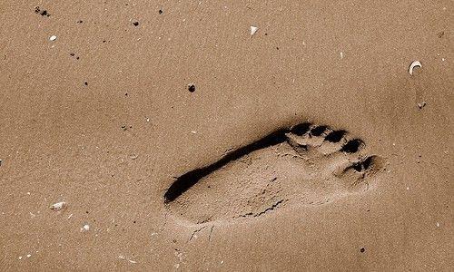 Comprendre les footprints | Net-Référencement
