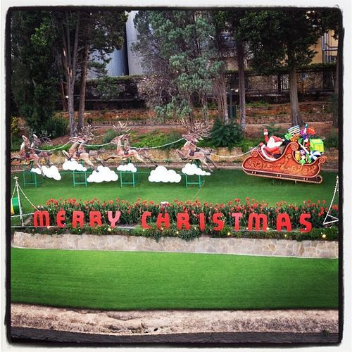 Kate Mason's family blog • Adelaide's Thebarton West End free annual Christmas lights brewery display • see and visit Adelaide's icons • why we love Adelaide