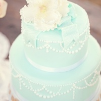 Love the simplicity of this: Color Palettes, Tiffany Blue Weddings, Red Flower, Tiffany Blue Cakes, Blue Simplicity, Blue Wedding Cakes, Beautiful Cakes, Wedding Color Schemes, The Roller Coasters