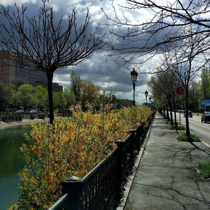 #bucharest #dambovita #river #bucharestsky