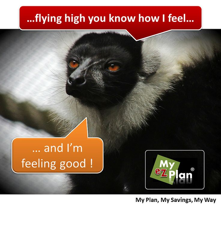 Oops ! Deadful Animal | OMG!! Have you been to myezplan.com… NO? What are you waiting for? -  | Provocative Art Exhibition | Activities in Cancun  in Mexico #cute #pets #naturelover #farm #animallovers