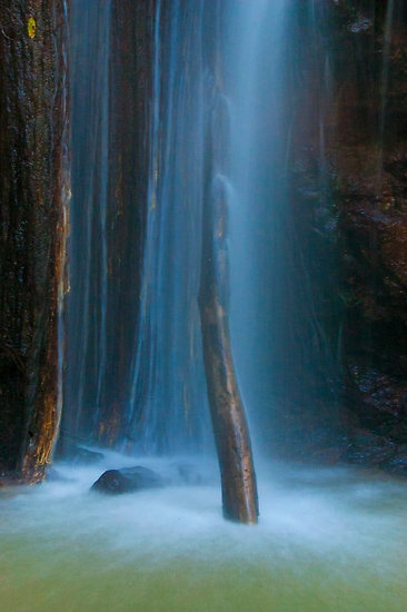 Secret magical places like Obi Obi Creek.