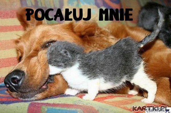 Pocałuj Mnie