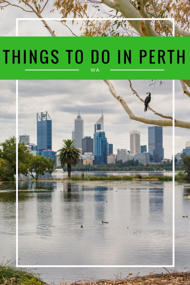 Our full guide of things to do in Perth with kids, including places to stay and other great tips of things to do in Perth with family.