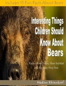 Image result for things with bears on them