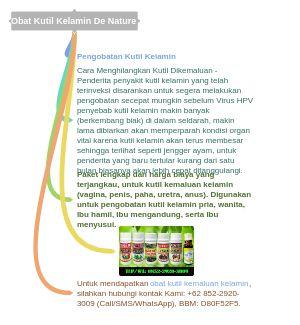 Obat Kutil Kelamin De Nature Obat Kutil Kelamin: WA: 0852-2920-3009 Pengobatan Kutil Kelamin, Cara Tips Mengobati Menghilangkan Sembuhkan Mengatasi Luar Dalam Kutil Di kemaluan Pria Wanita (Penis, Vagina, Dubur Anus, Selangkangan Paha) Herbal Alami Tradisional Kimia Salep Krim Oles Cream Apotik Kimia Farma K24 Medis Rumah Conyloma Acuminata Genital Warts obat-kelamin.com/ Paling Ampuh Manjur Mujarab Murah Terbaik Terbukti Terpercaya #obatkutilkelamin medium.com/@PENGOBATANKUTIL