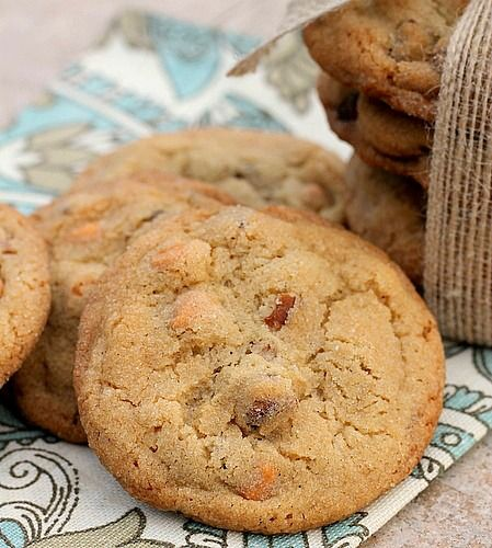 Sweet and Salty Butter Pecan Cookies are rolled in sugar with a slight touch of salt before baking to make them the perfect sweet and salty treat. They are delicious!